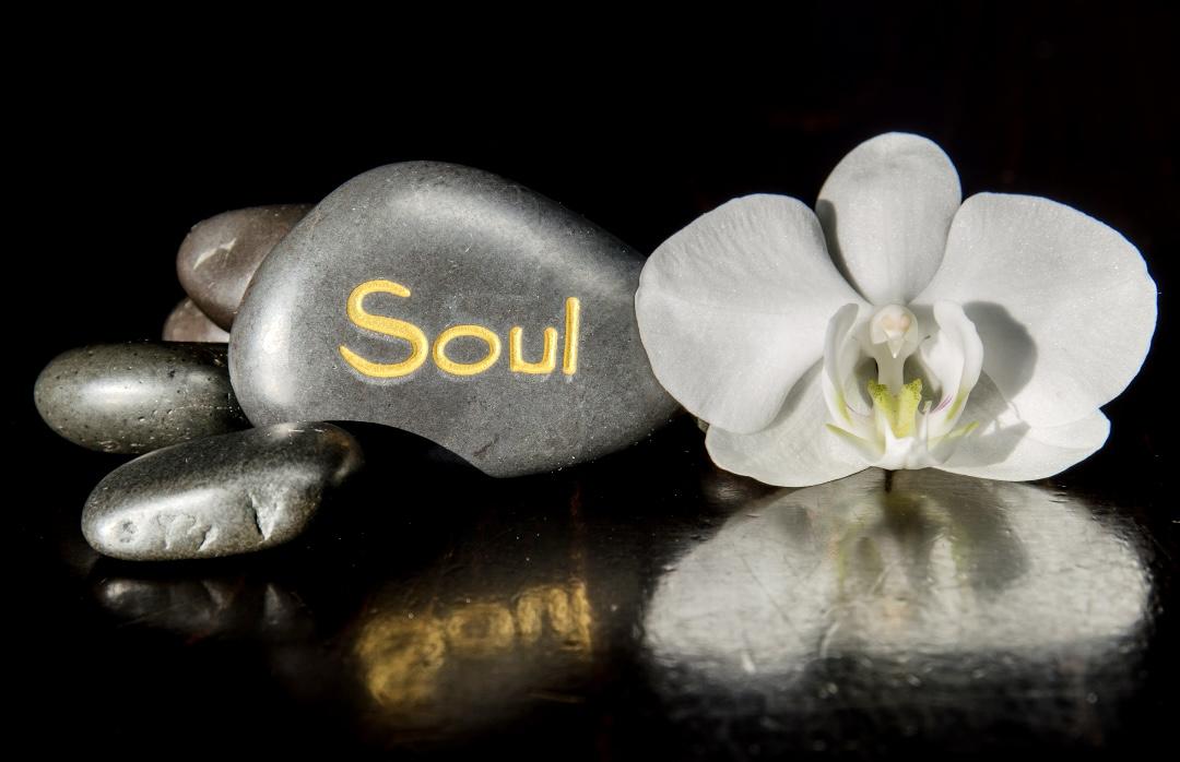 Conoscevi il muscolo dell'anima?